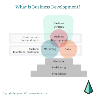 Graphic showing the flexible role of a business developer in a company